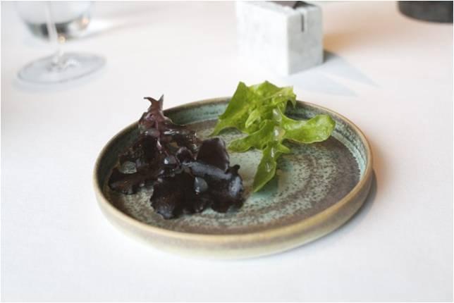 Letsyltede salatblade med hyldeblomstgele