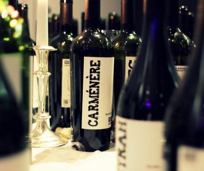 Lidt af aftenenes udvalg fra Elqui-Wines...