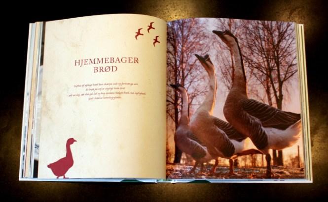 Et af de flotteste billeder i bogen...