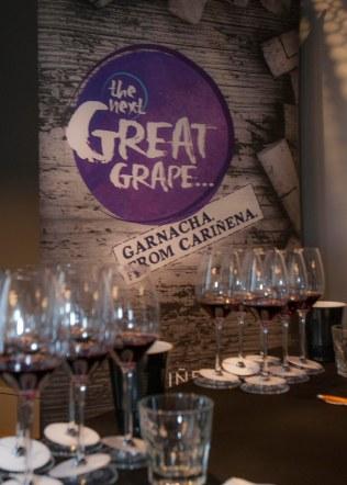 Branding_Next Great Grape
