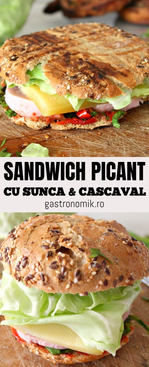 Sandwich picant cu sunca