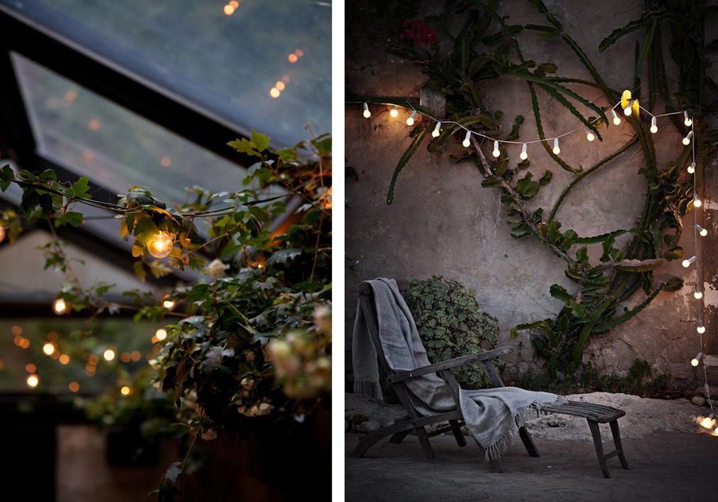 guirnaldas de luces  Gata Flora