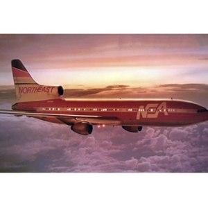 NEA Fictional Airline