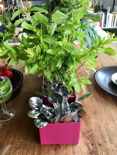 Centre table maison plantes couverts