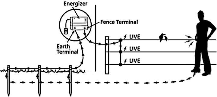 [DIAGRAM] Key Largo Live Well Wiring Diagrams FULL Version