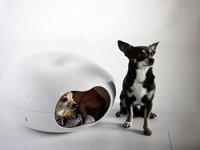 Unique Dog Beds for Small Dogs - GatesAndSteps.com