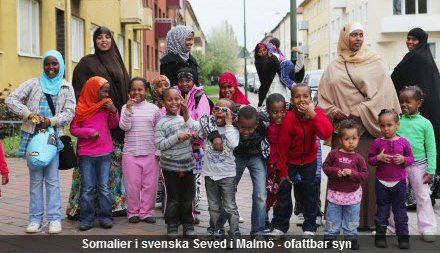 Afbeeldingsresultaat voor somali family sweden