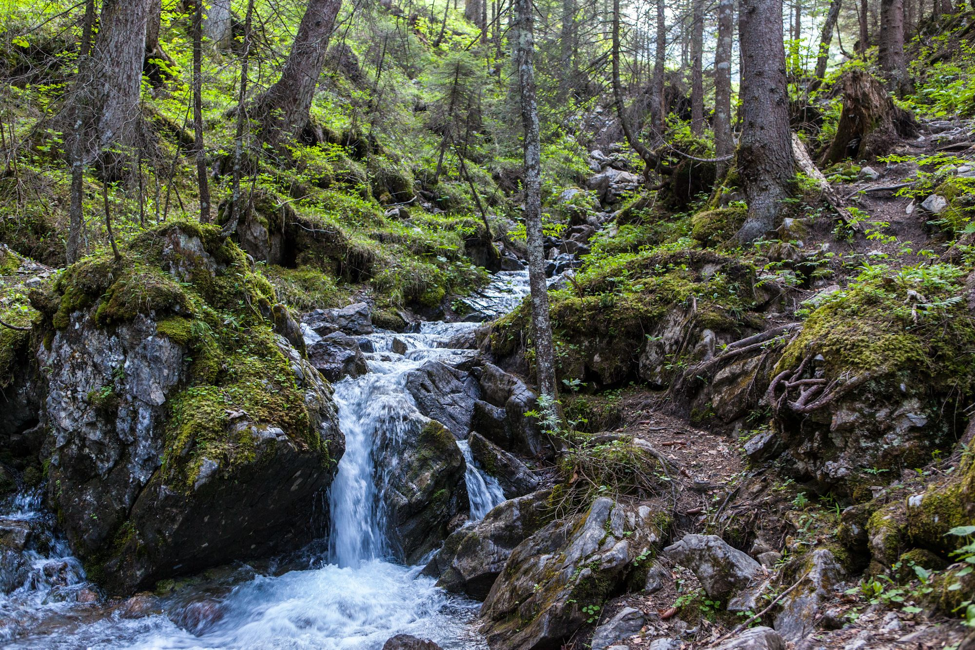 Trail to Glinga-Brunnen (Austria)