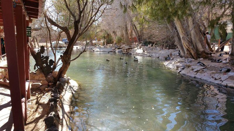 Bonnie Springs Ranch 02