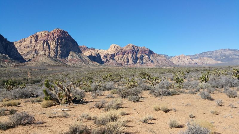 Red Rock Canyon 01