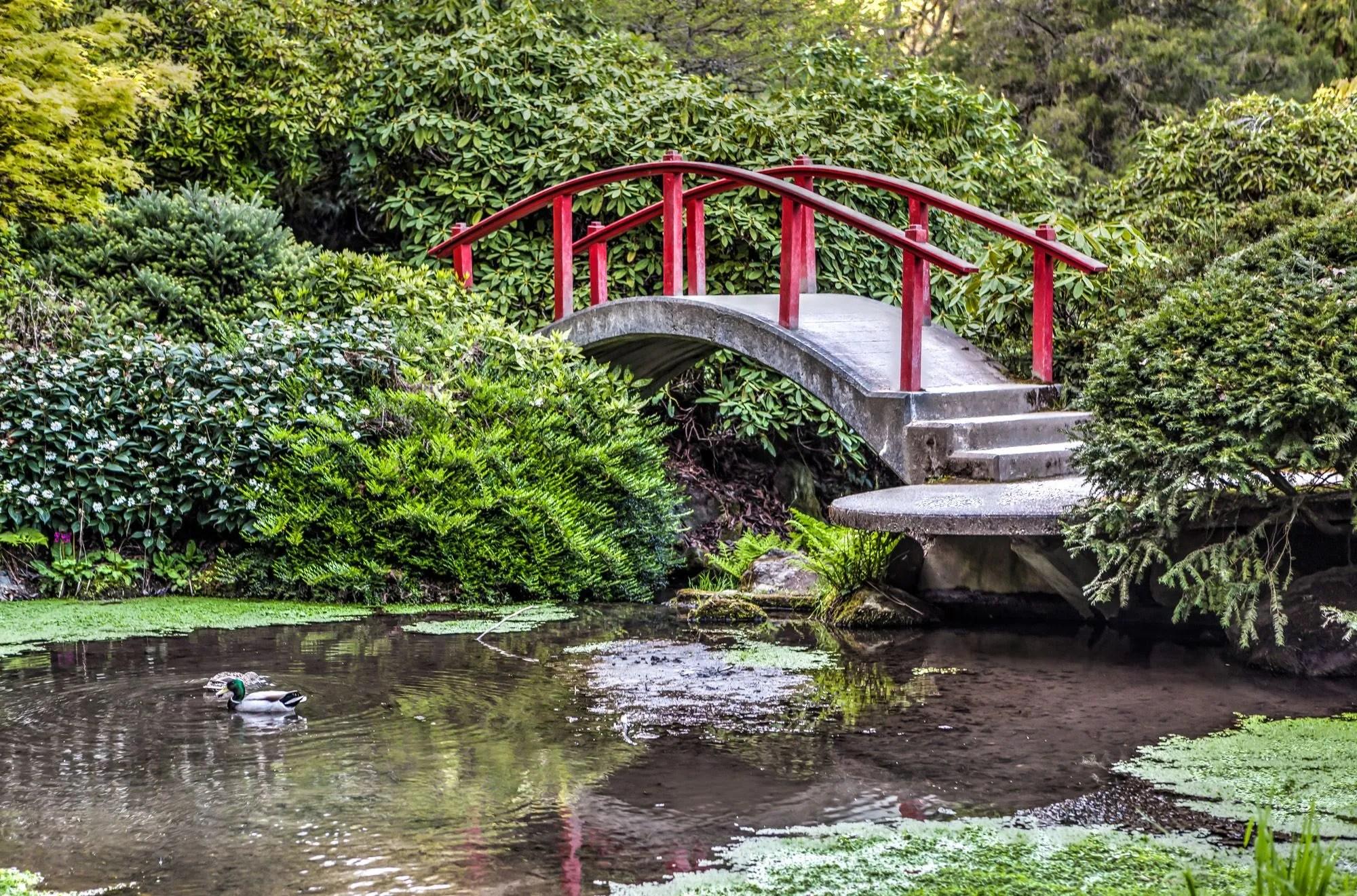 Kubota Garden – An amazing Japanese Garden in Seattle