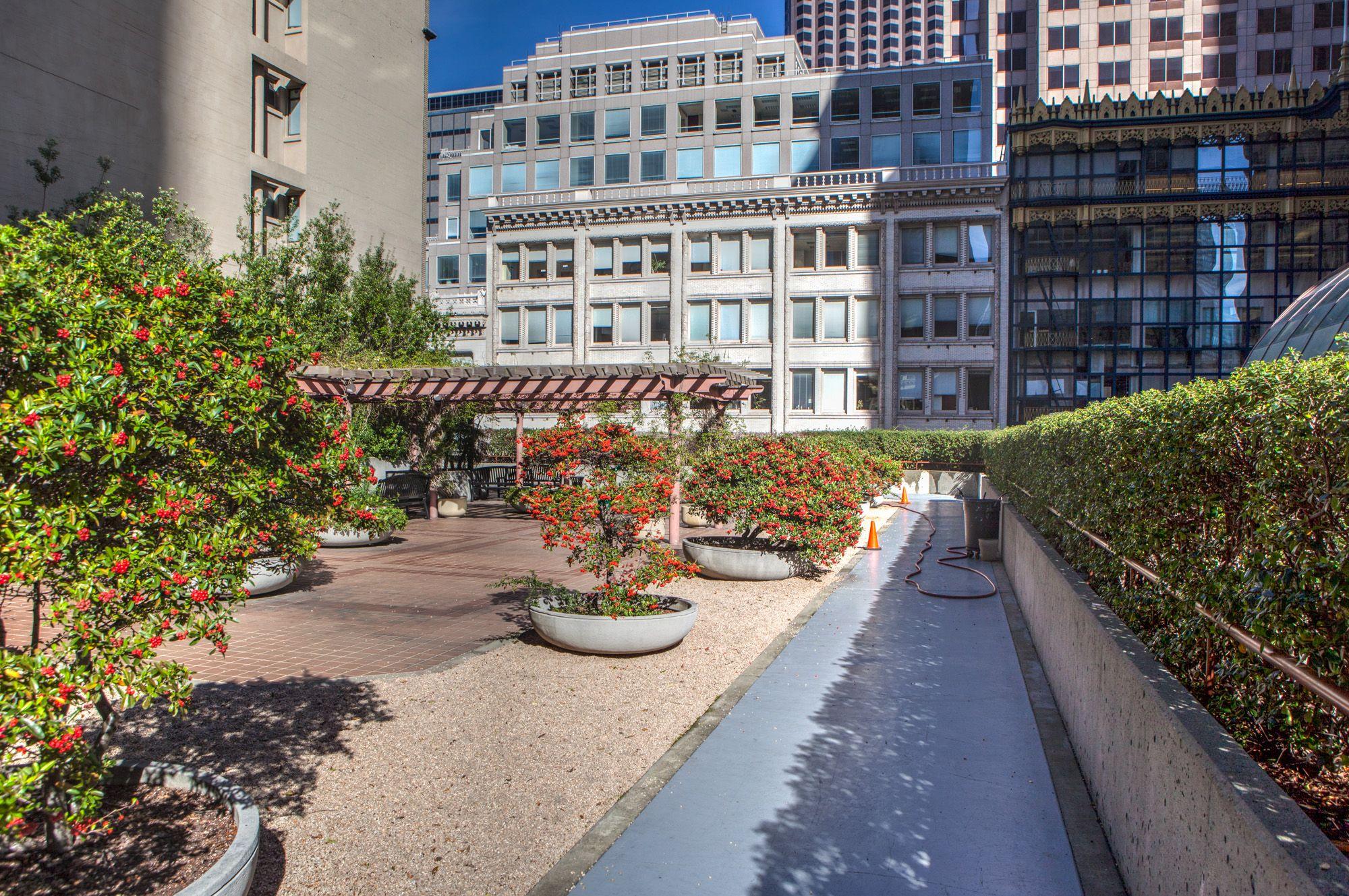 San Francisco's hidden Rooftop Gardens (The Complete List ...