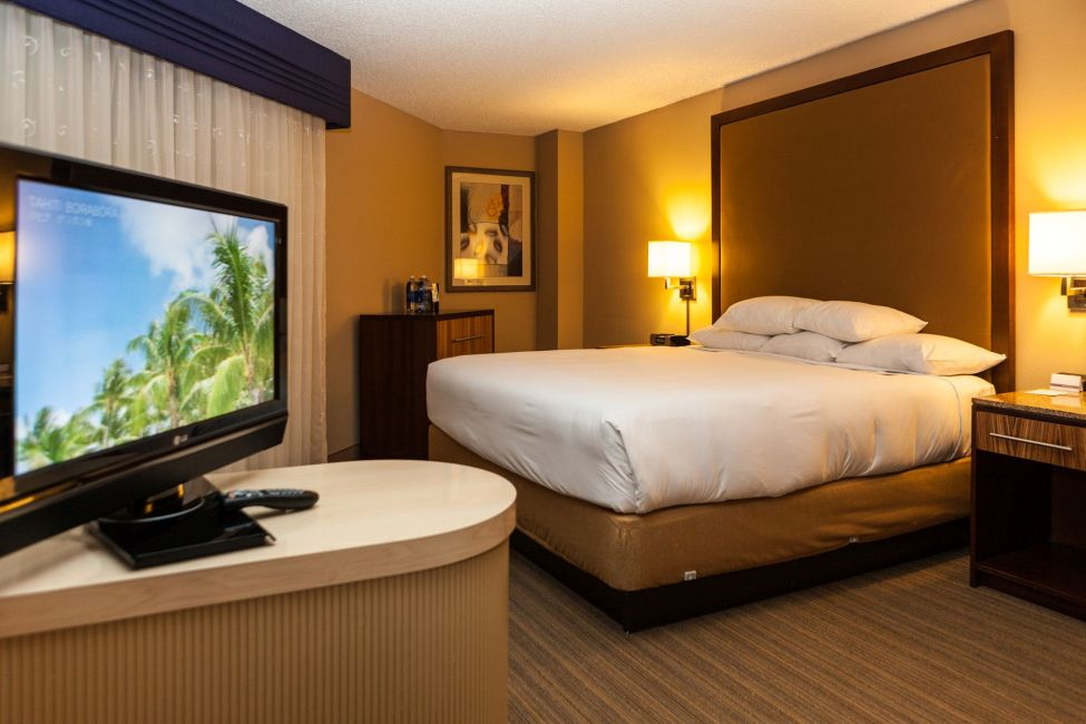 Miami Suite