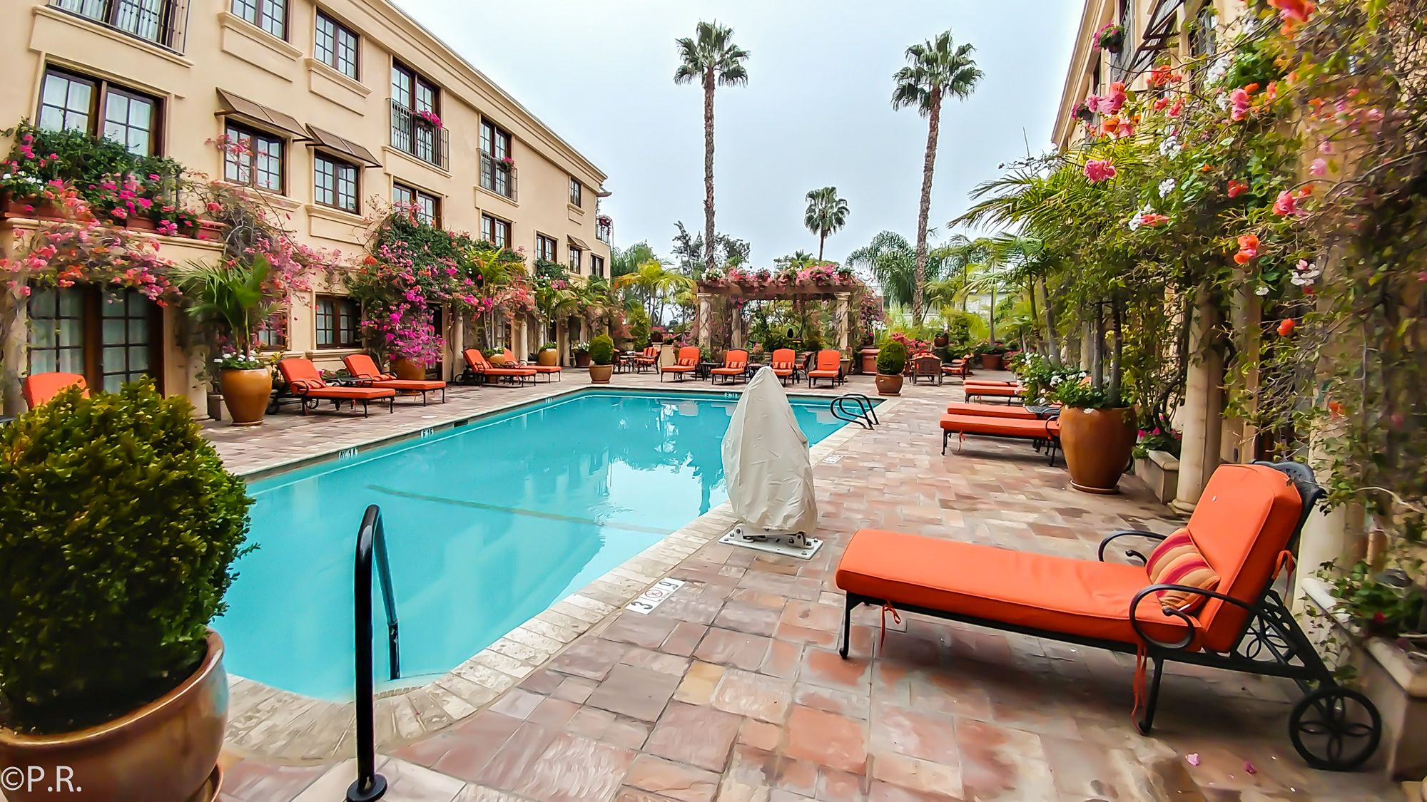 Hotel Review: Best Western Plus Sunset Plaza in Los Angeles