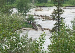 Fish Creek PP - flood recovery