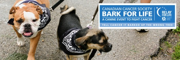 barkforlife_header_logo