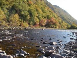(Cheticamp River Salmon Association.CRSA 2013)