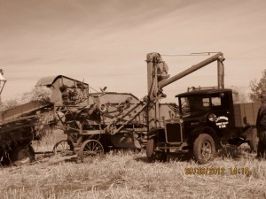 Lansdell Threshing Bee 1