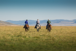 Waldron Shareholders with horses, photo by Kyle Marquardt