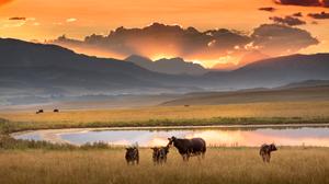 Waldron sunset, Photo by Kyle Marquardt, kylefoto.com