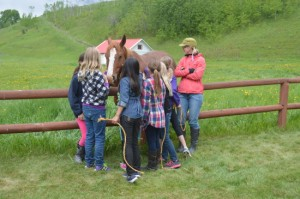 Horsestudents-550x365