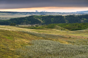 Glenbow Ranch Provincial Park was established in 2008 from a donation of land by the Harvie family, between Calgary and Cochrane. Photo: Harvey Martens.