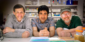 Computing science researcher Siamak Ravanbakhsh (middle), with his co-supervisors Russell Greiner (left) and David Wishart. Ravanbakhsh has developed a computer system called Bayesil that could dramatically improve diagnosis and treatment of a wide spectrum of diseases.