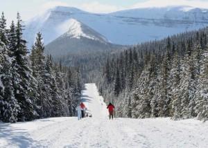 Skiing to Cameron Lake