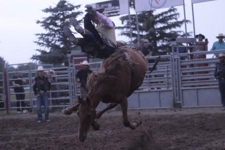 Nanton Nite Rodeo