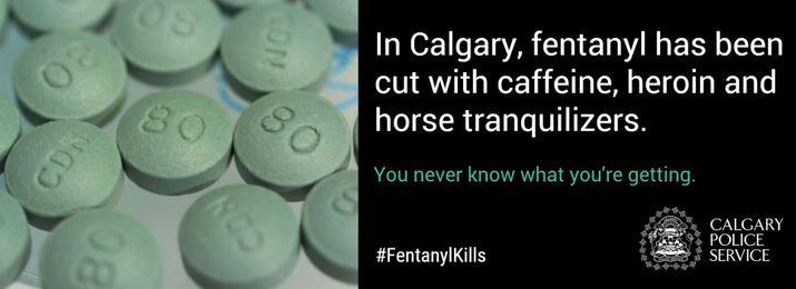 Calgary+Police+Service+Slide+5_3390329c-e956-4368-bd91-7b3d3a0bd4a5-prv