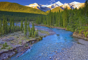 Calgary's water comes from the Bow and Elbow rivers