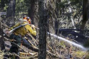 Waterton fire - firefighter