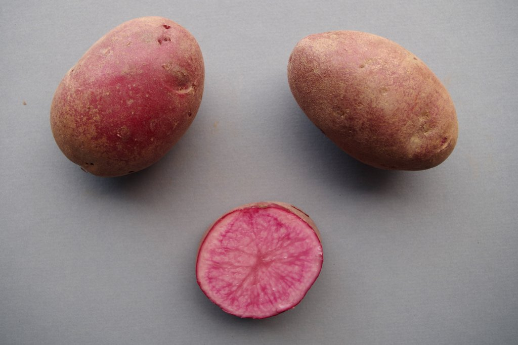 Canada red and pink potato