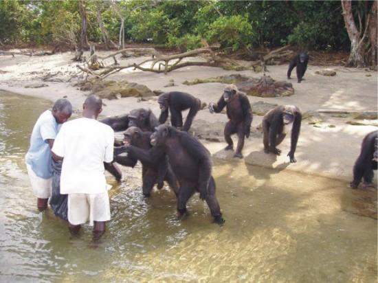 Photo: AACC Liberia