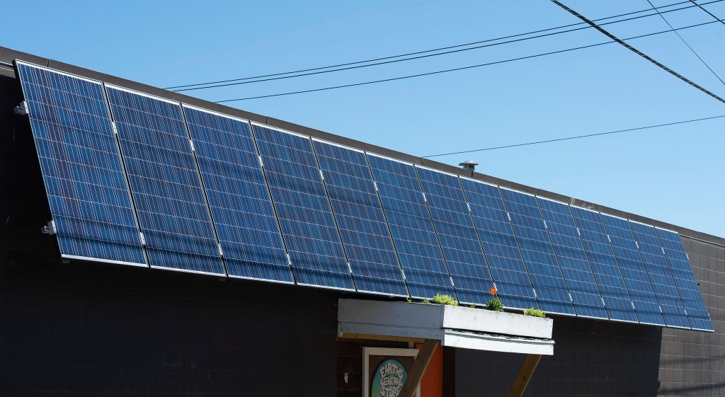 Solar panels at Earth's General Store in Edmonton