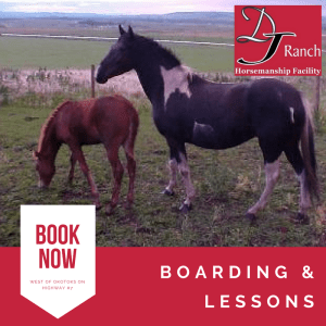 Room to Roam ~ for you and your horse at DJ Ranch