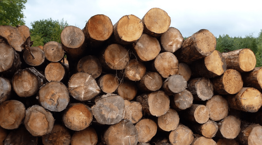 Softwood Lumber Decision: Ministers Dreeshen and Fir