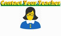 Contact Your Teacher