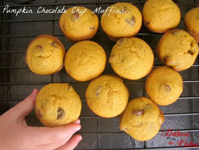 Pumpkin Chocolate Chip Muffins1