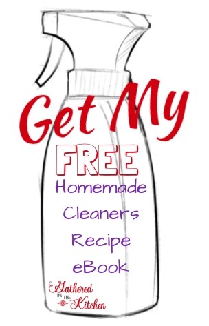 FreeFree homemade cleaners ebook