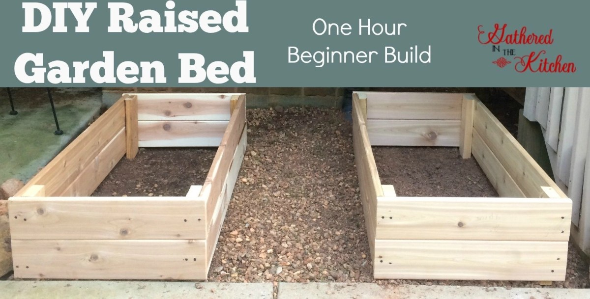 DIY Raised Garden Bed: Beginner Level