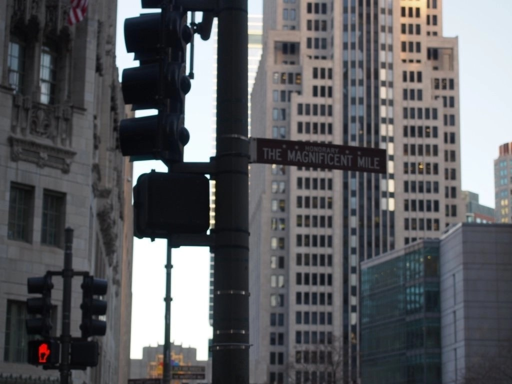 The Magnificent Mile: Chicago, IL