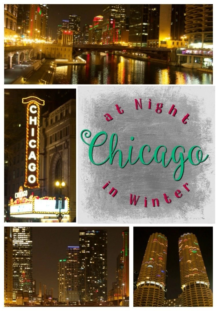 Chicago at Night In Winter