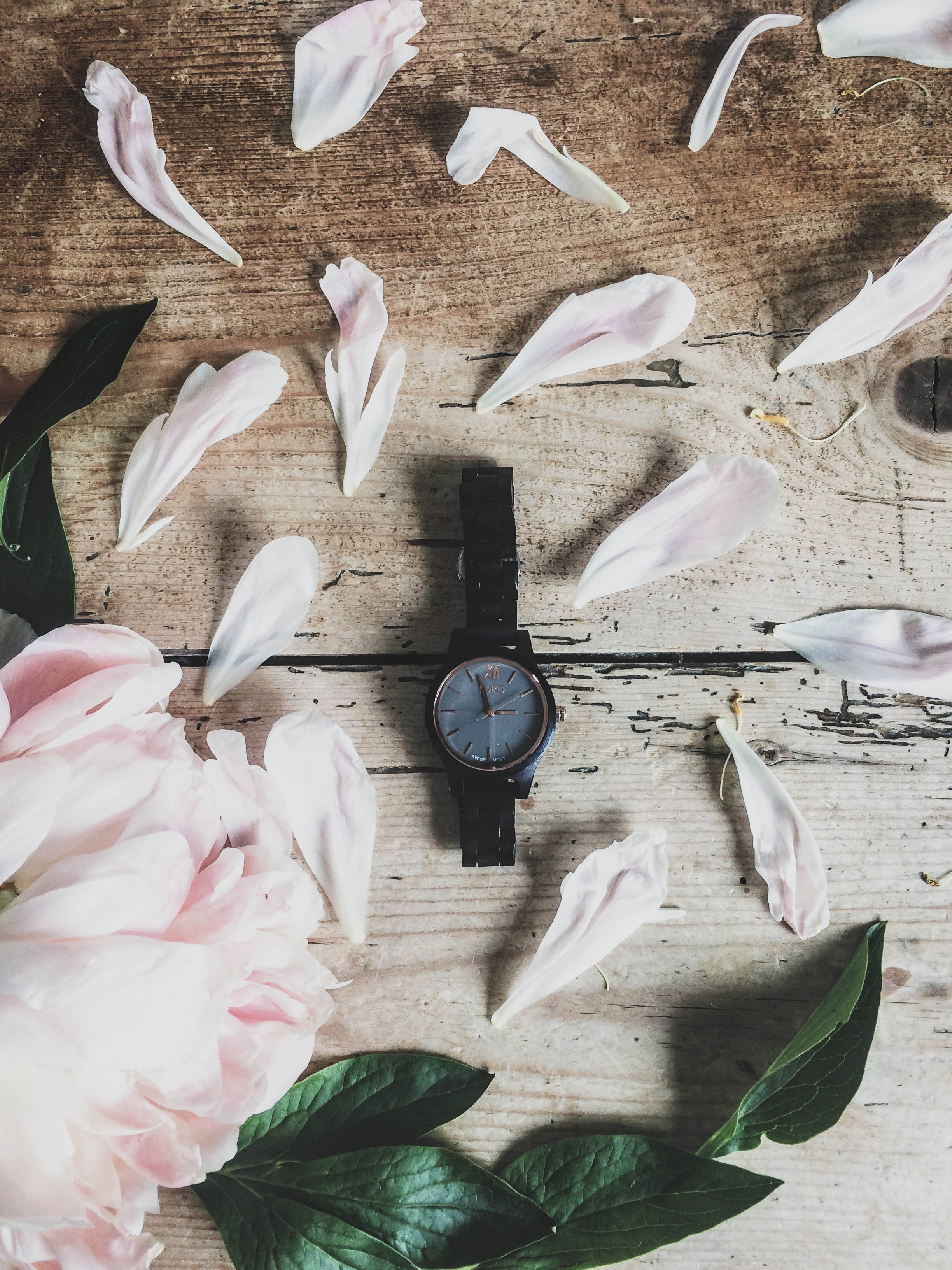 Jord Wooden Watches Giveaway