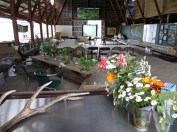 Clatsop/Nehalem Tribe- Journey Plant Medicines Workshop