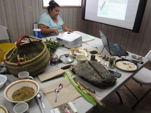 Klamath Tribe Traditional plants program workshops