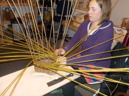 willow weaving the side Shannon