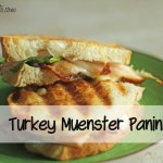 Turkey & Muenster Panini