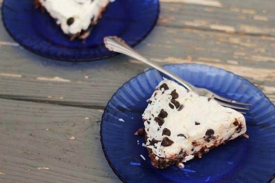 Coconut Chocolate Chip Ice Cream Pie