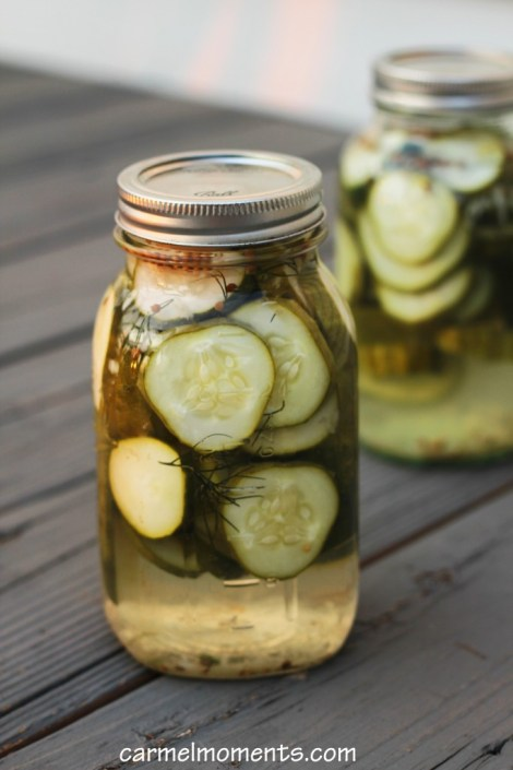 Refrigerator Dill Jewish Pickles